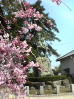 晋作の像と桜