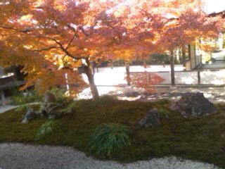 毛利邸の中庭