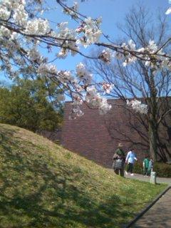 熊本の美術館