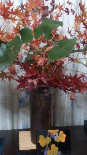 紅葉とのいちご