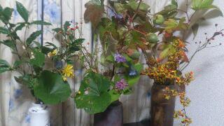 秋の揃い踏み